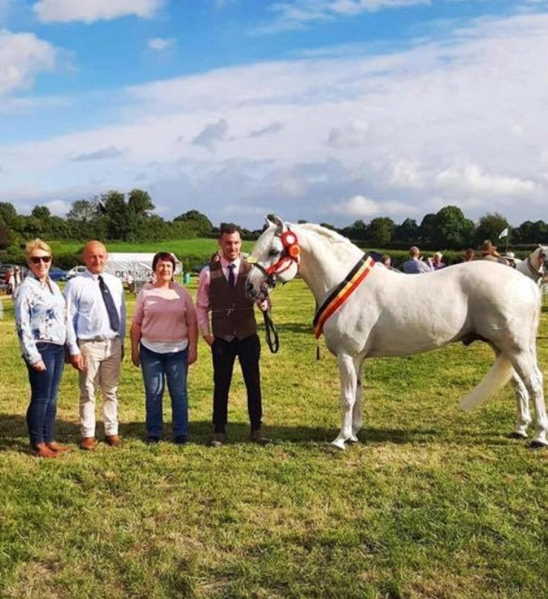 PONY TALES: Errismore Rocky takes the crown