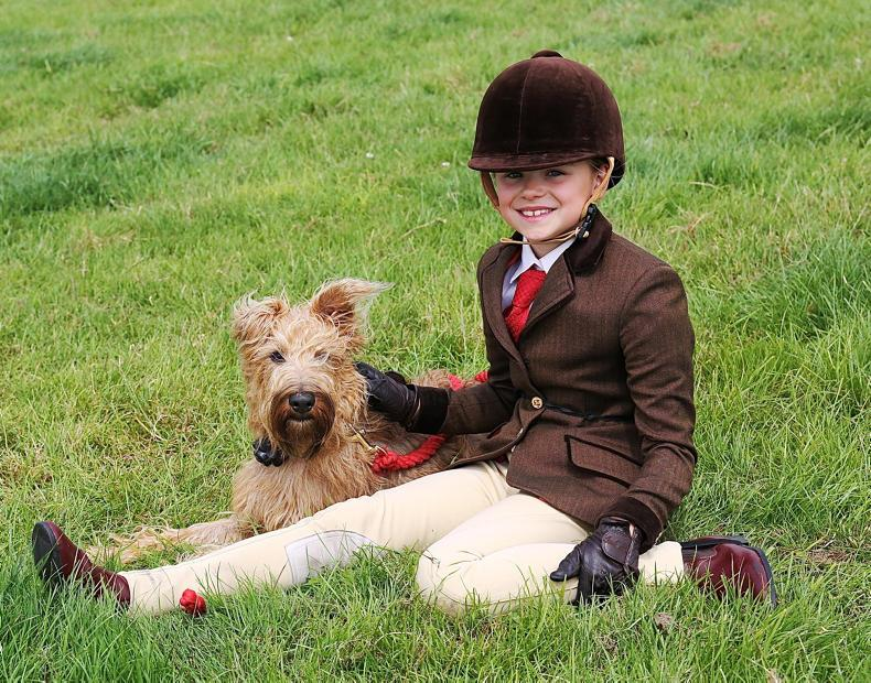 PONY TALES:  Humphrey is a girl's best friend....