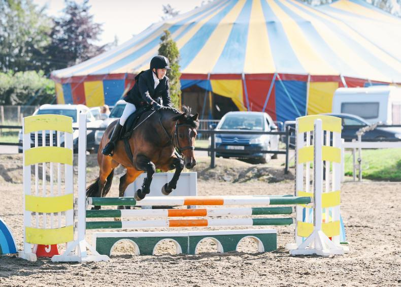 AIRC SHOW JUMPING: Keogh dominates in the derby ring