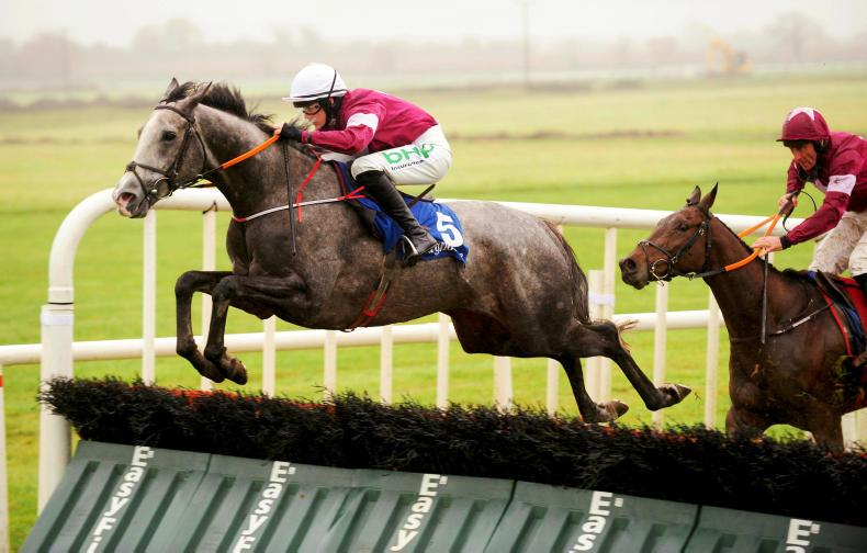 TIPPERARY SUNDAY: Jan Maat could deliver over fences