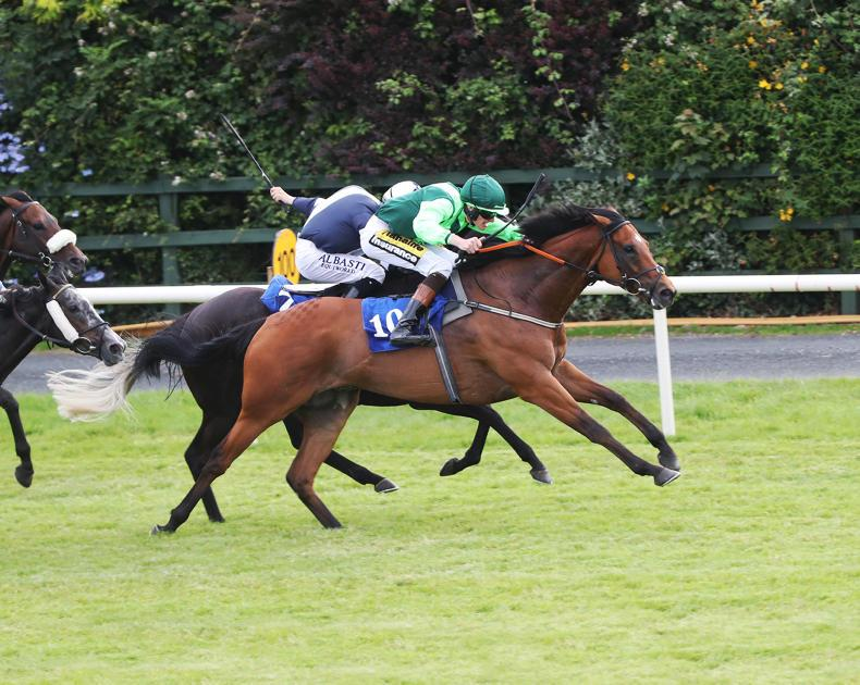 KILLARNEY TUESDAY: Galway next for Koybig