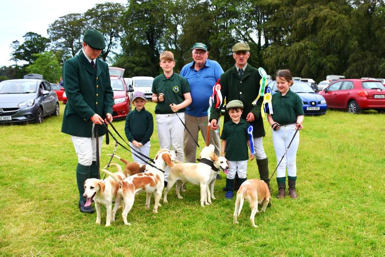 PONY TALES: Learning from the experts