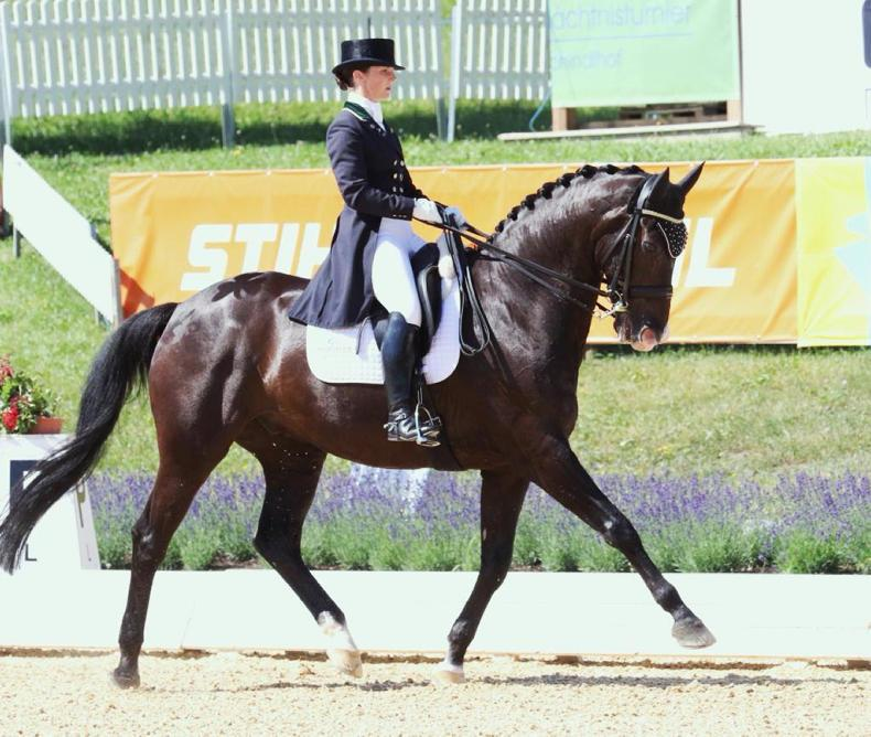 DRESSAGE: Irish team sixth and Reynolds sets new Irish record