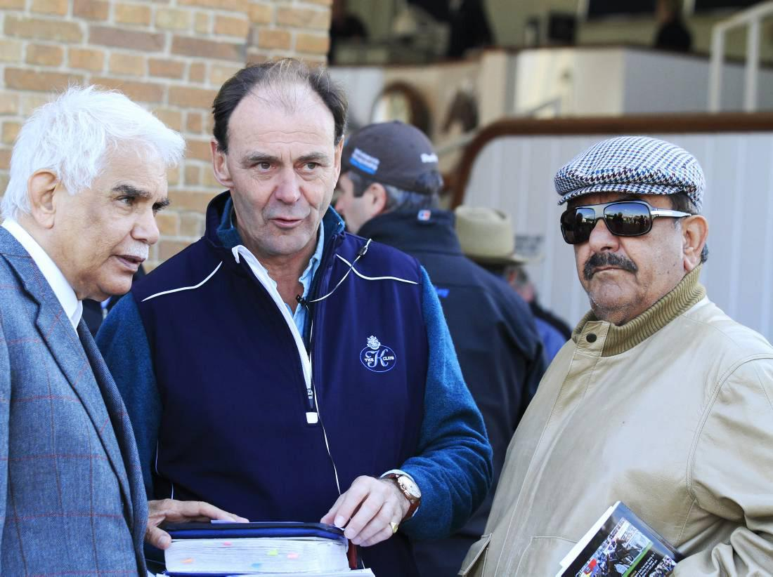 Review 2014: Frankel factor helps breeding stock sales surge ahead