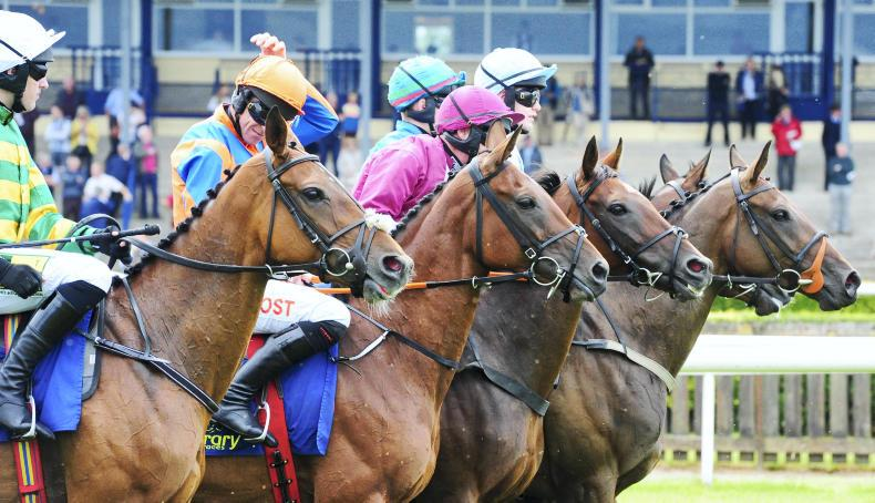 PICTURE DESK: Scenes from a week at the races