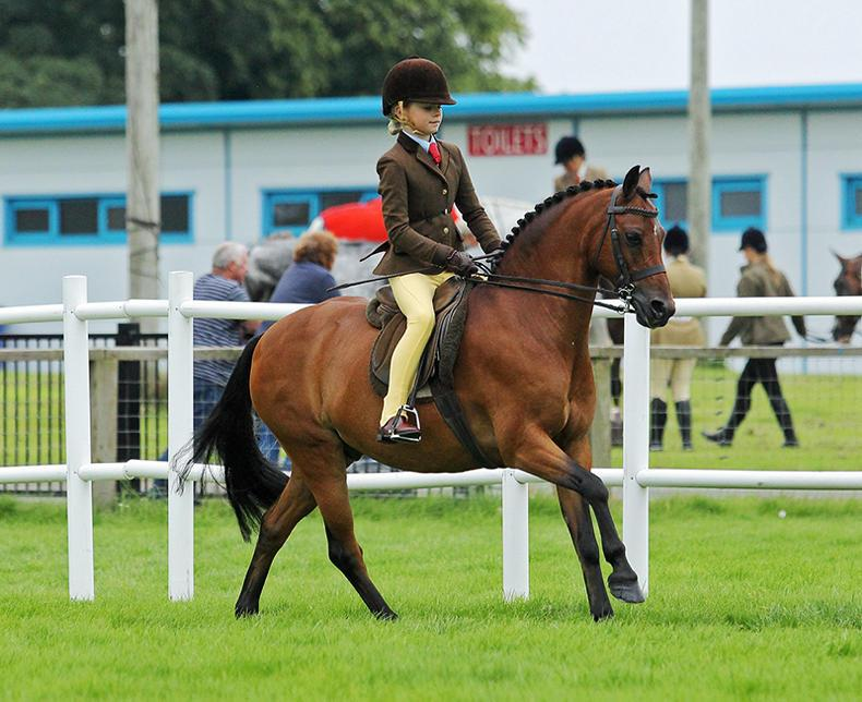 PONY TALES:  HOYS ticket for Charlotte and 'Jack'