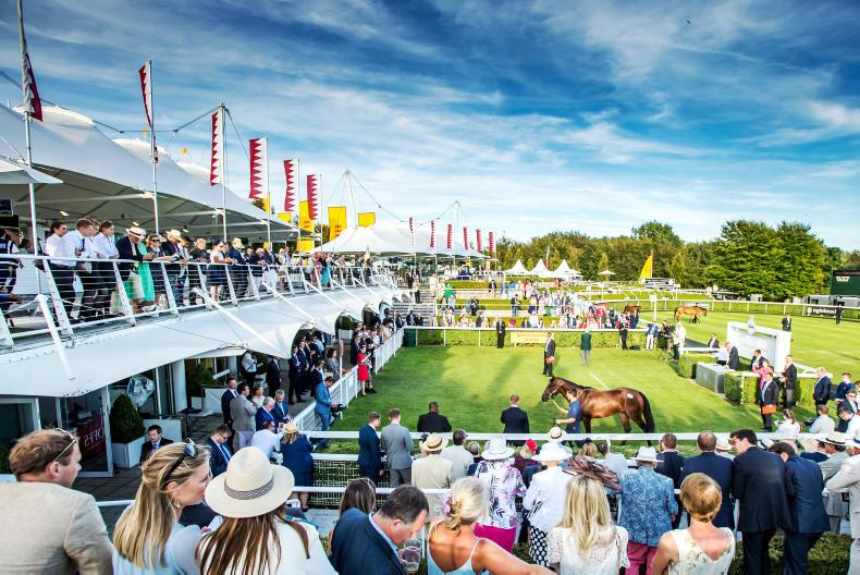 GOFFS GOODWOOD SALE: Glorious opportunites