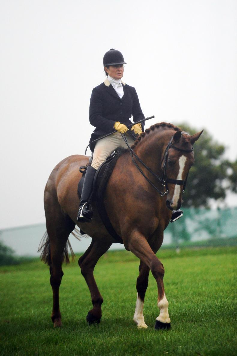 AROUND THE COUNTRY:  Sweet reward as Major Malone takes the crown