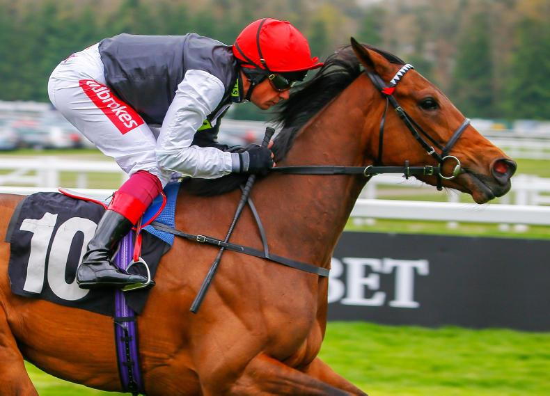 THE WEEK THAT WAS: Keeping the faith in late two-year-olds