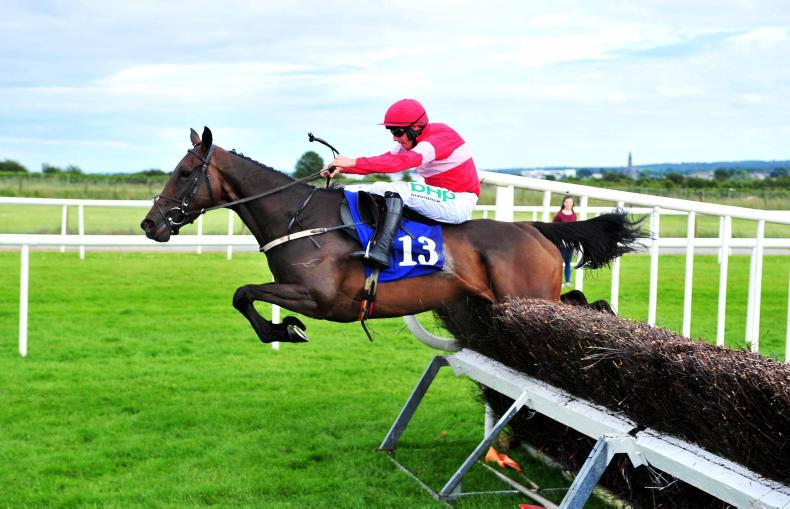 GOFF'S UK AUGUST SALE: Winning ways at Doncaster