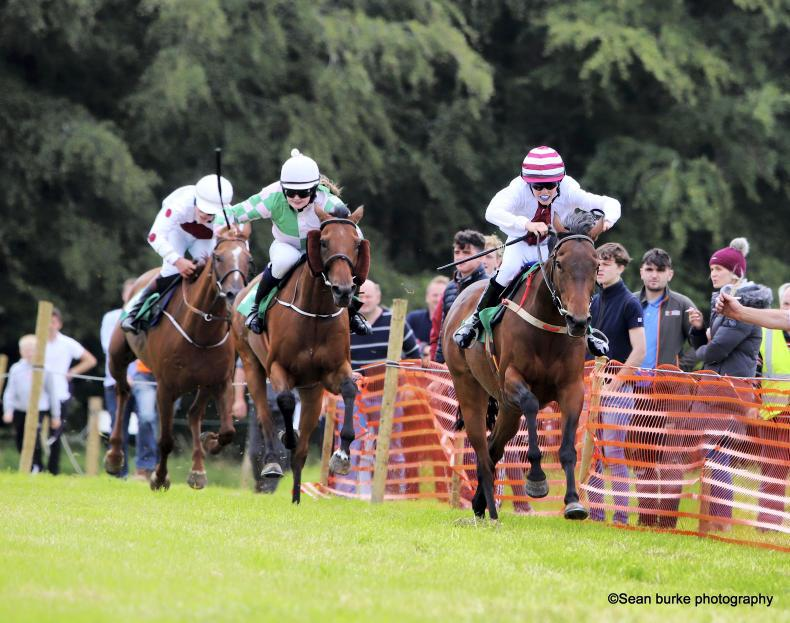 HORSE AND PONY RACING: Memorable day for Bowen and Sugrue