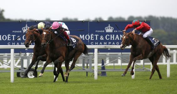 Enable not certain to take in York before historic third Arc bid