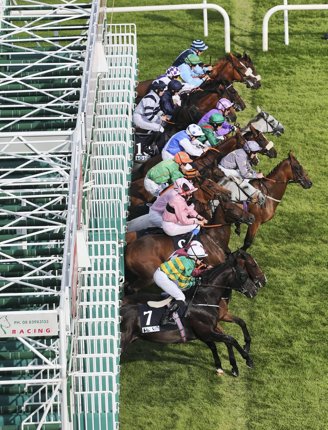 Review 2014: Irish Champions Weekend a fitting showcase for Irish racing