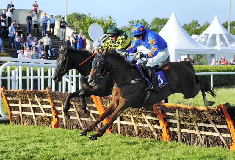 WEXFORD FRIDAY: Dead heat for Hogan and McNally