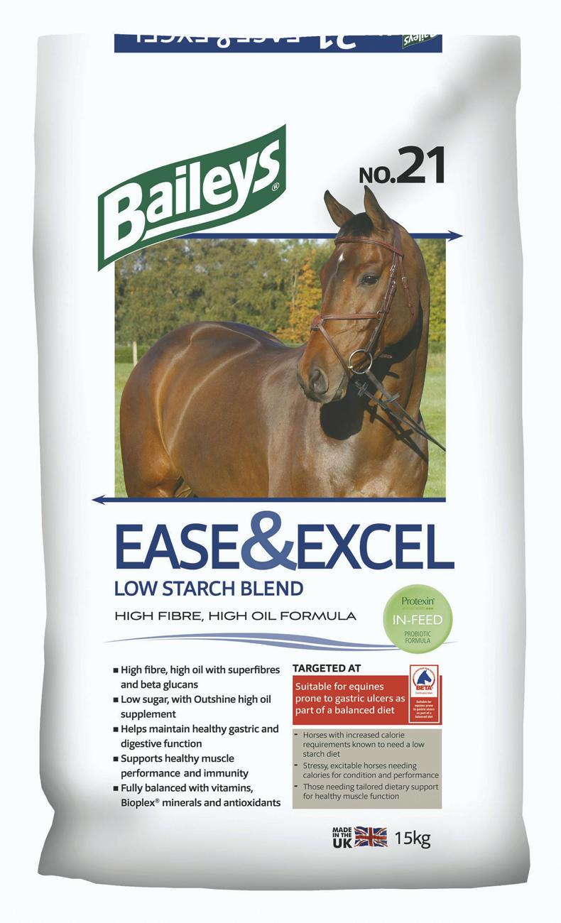 HORSE SHOW PREPARATION: Avoiding gastric ulcers