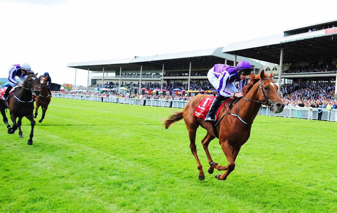 Review 2014: Ballydoyle back on track