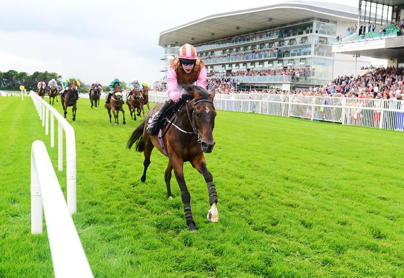 IN THE BETTING RING: Positive start as Galway delivers again