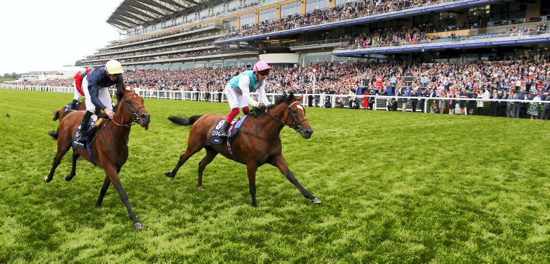 BRITAIN: Unstoppable Enable strikes again