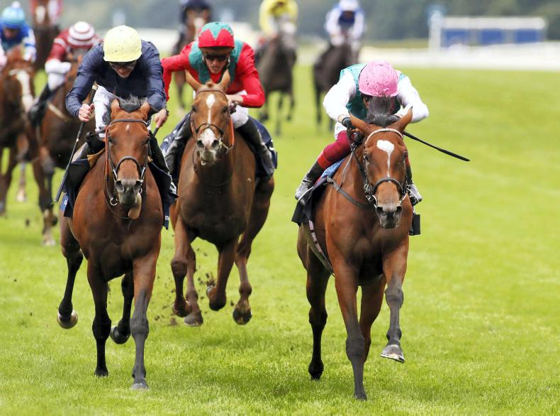 SIMON ROWLANDS: Enable has guts and brilliance