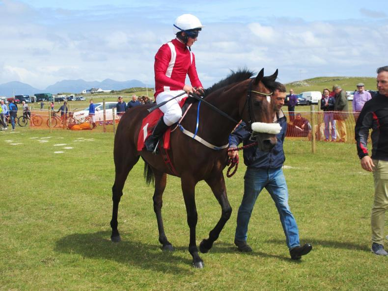 HORSE AND PONY RACING: Cleary off the mark with first winner