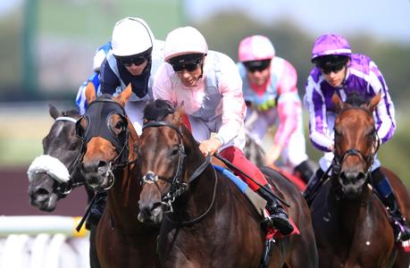 Too Darn Hot far too good in Sussex Stakes