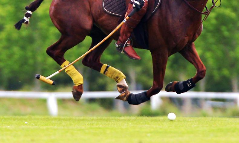 AROUND THE COUNTRY:  Polo's LHK come out on top