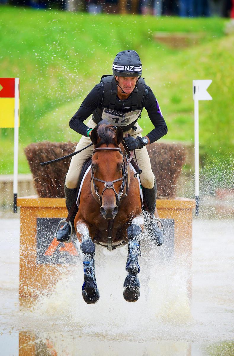DUBLIN HORSE SHOW PREVIEW:   World experts hosting RDS masterclasses