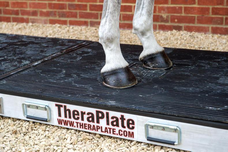 ADVERTORIAL:  TheraPlate - boost the care and performance of your horses