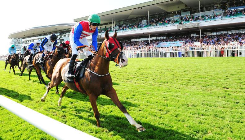 GALWAY THURSDAY: Ice cold Lee delivers Poet again