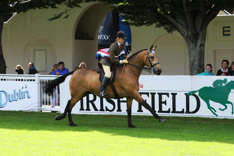 DUBLIN HORSE SHOW PREVIEW: Totally Dun back to defend title