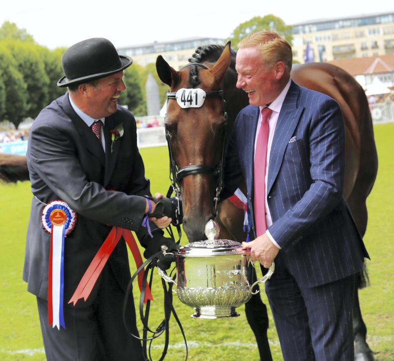 DUBLIN HORSE SHOW PREVIEW:  Eyes on the prize