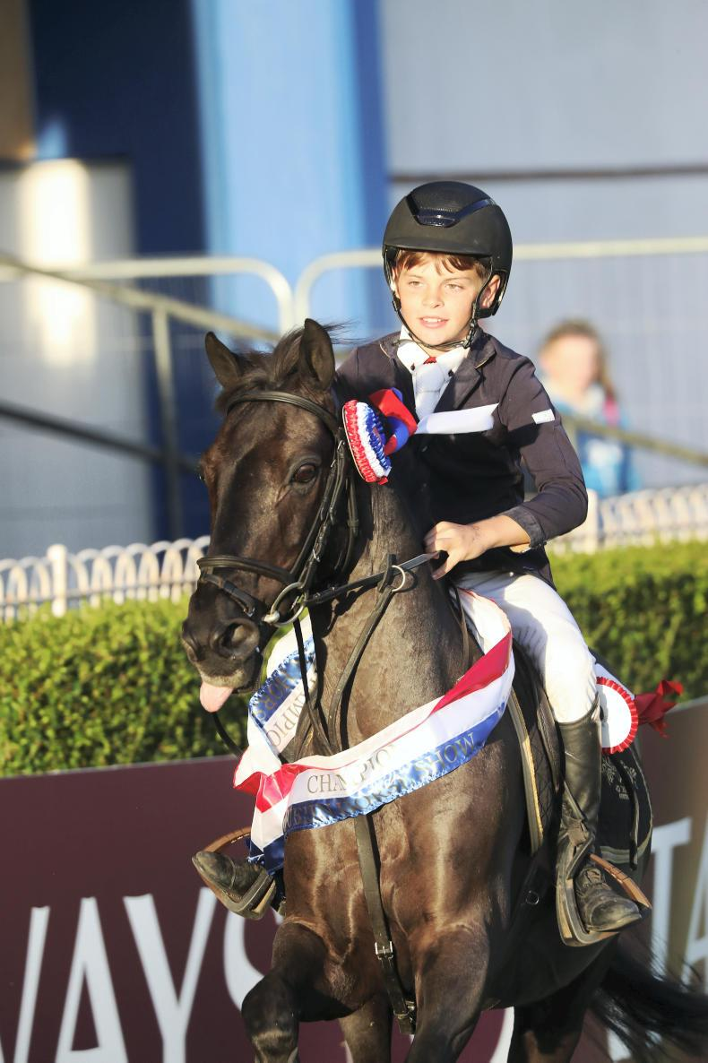 DUBLIN HORSE SHOW PREVIEW:  Ultra competitive pony ranks