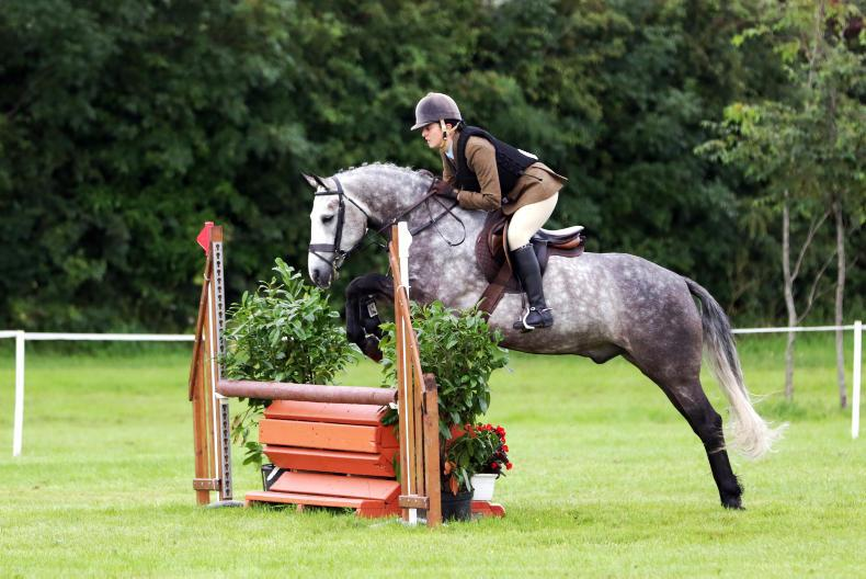 DUBLIN HORSE SHOW PREVIEW: McGowan aiming to win back title