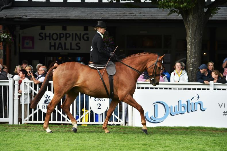 DUBLIN HORSE SHOW PREVIEW: De Burgh well mounted for Dublin