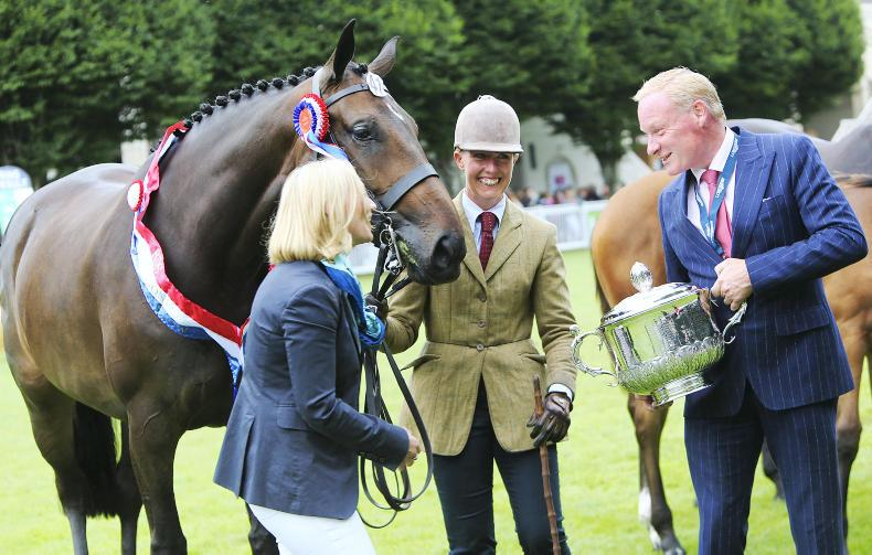 DUBLIN HORSE SHOW PREVIEW:  Queen B is back