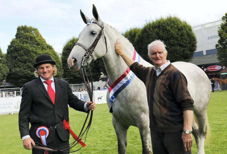DUBLIN HORSE SHOW PREVIEW: Battle for the ribbons