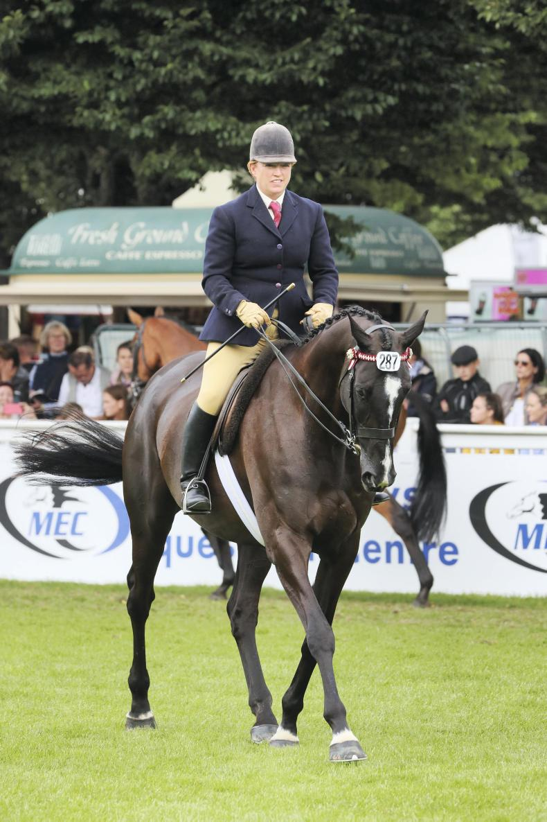DUBLIN HORSE SHOW PREVIEW: Return of the Don