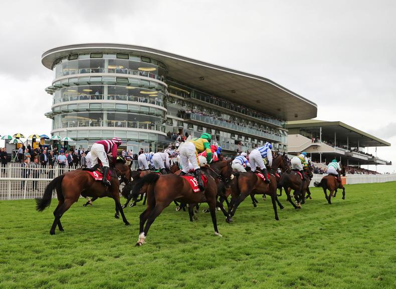 RYAN McELLIGOTT: Despite positive stats bookmakers outlook is stark
