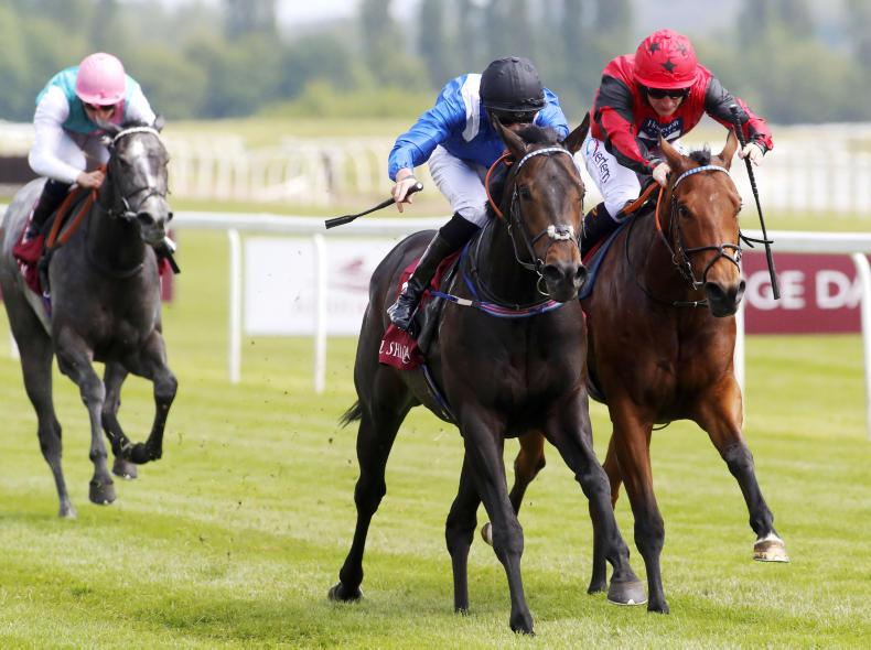 BRITISH PREVIEW: Progressive Khaadem can land Stewards Cup from positive draw