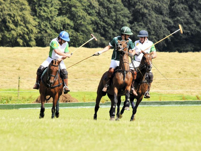 AROUND THE COUNTRY: Novices hit their stride at Bishopland