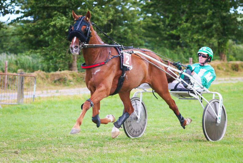 HARNESS RACING: Destiny calls for O'Leary