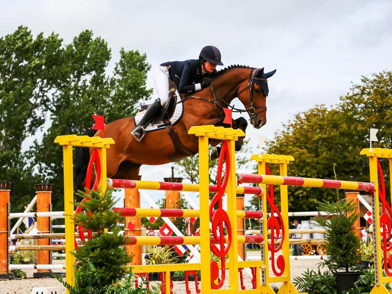 NEWS:  Over 6,000 entries at Millstreet Horse Show