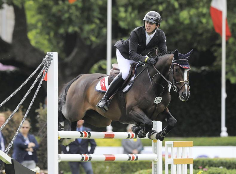 DUBLIN HORSE SHOW: Clean sweep for Irish riders on day one