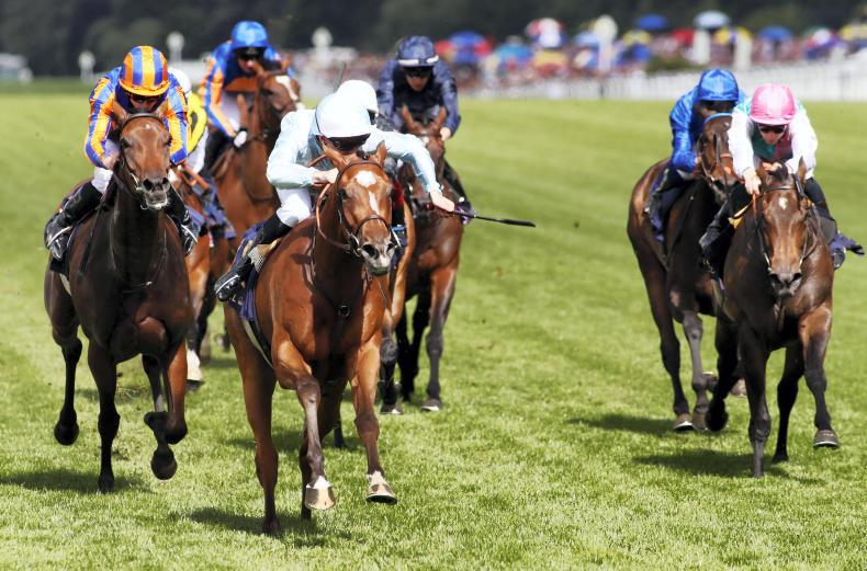 FRENCH PREVIEW: Watch Me spies another Group 1