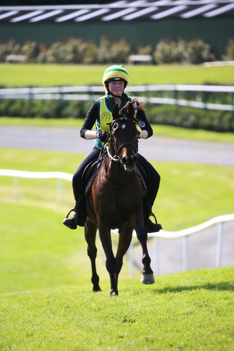 VIEW FROM ABOVE: Quick turnaround at Downpatrick ahead of endurance ride