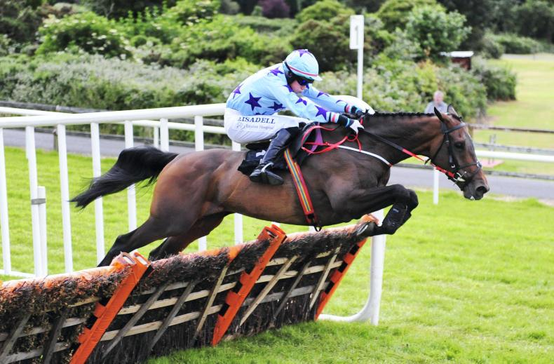 DOWNPATRICK SUNDAY: Road To Dubai going the right way