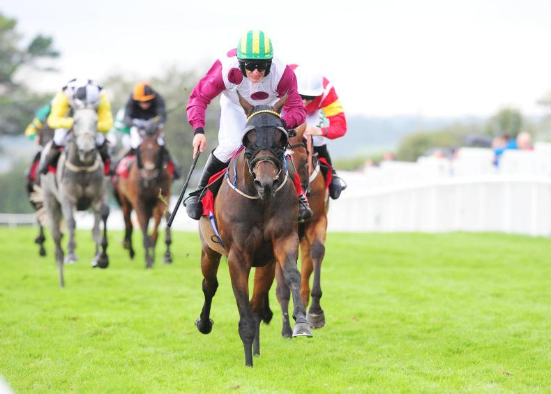 GALWAY SATURDAY: Great Trango pounces late to win