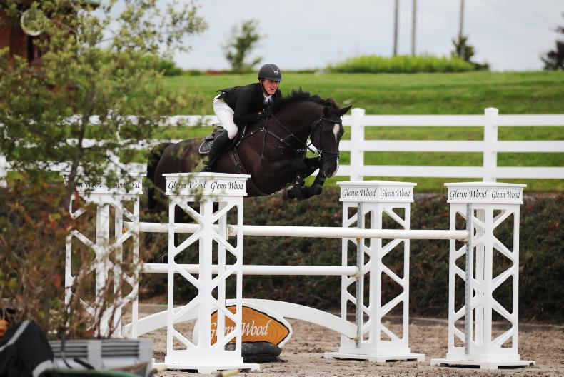 AROUND THE COUNTRY:   Hollypark Galloway seals Grand Prix for MacDonagh
