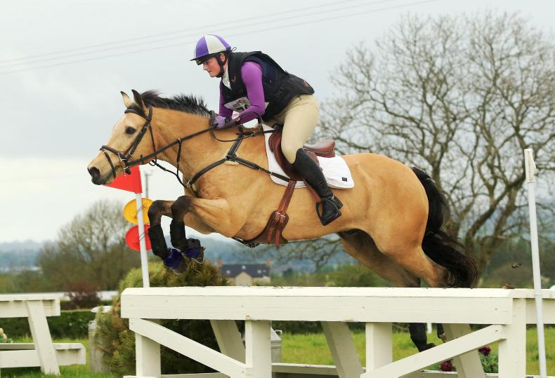 AMATUER EVENTING: Lyons and Rupert Bear a match made in heaven