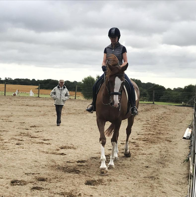 AROUND THE COUNTRY: Dressage coach impressed by debut visit